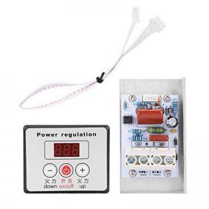 220V 10000W SCR Module de Thermostat de Gradateur de Commande de Variateur de Vitesse Réglable en Courant Alternatif Digital avec Régulateur de Tension de la marque Walfront image 0 produit