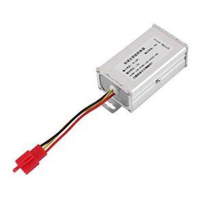 Adaptateur de convertisseur Intelligent Universel de transformateur de véhicule électrique 48V à 12V Professional Supply pour Les Fabricants de véhicules de la marque Delicacydex image 0 produit