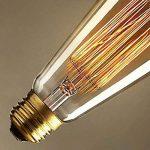 ALK E26E2722W ST64vintage Edison Tungsten Filament Cage d'écureuil ampoule à incandescence rétro Verre Clair Barre de lumière pour Home Party Source d'éclairage (22W) de la marque ALK image 2 produit