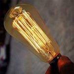 Ampoule Edison E27 Cage d'écureuil ampoule, Licperron ST58 60 W 220 V style antique verre Dimmable ampoule à filament, Lot de 6 de la marque Licperron image 3 produit