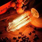 Ampoule Edison E27 Cage d'écureuil ampoule, Licperron ST58 60 W 220 V style antique verre Dimmable ampoule à filament, Lot de 6 de la marque Licperron image 4 produit