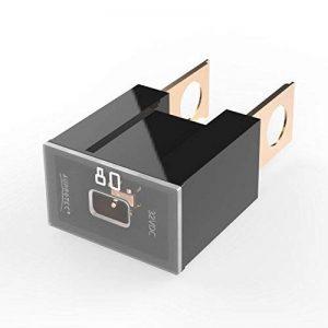 Auprotec® PAL B fusible bloque mâle OTO BT fusibles japonaises 30A - 140A choix: 80A Ampere noir, 1 pièce de la marque Auprotec Fuses image 0 produit