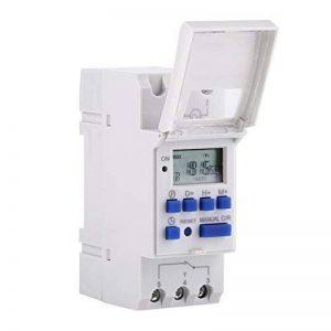 DC 12 V Relais Minuterie ,Walfront Numérique LCD Affichage Programmable Minuterie Industrielle Interrupteur Minuterie Électronique pour Appareils Électroménagers Rail DIN Relais(220V anglais ) de la marque Walfront image 0 produit