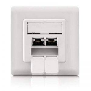 deleyCON prises réseau universelles Cat. 6a - 2x ports RJ45 - protégés- Apparent/encastré - Réseau ethernet 10 Gigabits - norme TIA/EIA-568A&B - blanc/blanc uni de la marque deleyCON image 0 produit