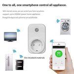 Diolumia - Prise de Courant Intelligente Wi-Fi - Fonction Timing - Compatible avec Android, iOS et Amazon Echo pour Tablette et Smartphone APP Switch interrupteur Domotique Wifi- Prise télécommande progrommable -Standard europe de la marque Diolumia image 3 produit