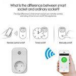Diolumia - Prise de Courant Intelligente Wi-Fi - Fonction Timing - Compatible avec Android, iOS et Amazon Echo pour Tablette et Smartphone APP Switch interrupteur Domotique Wifi- Prise télécommande progrommable -Standard europe de la marque Diolumia image 2 produit