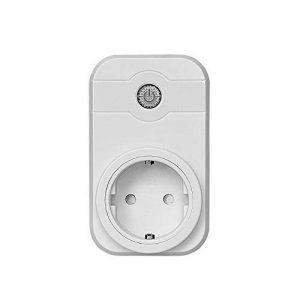 Diolumia - Prise de Courant Intelligente Wi-Fi - Fonction Timing - Compatible avec Android, iOS et Amazon Echo pour Tablette et Smartphone APP Switch interrupteur Domotique Wifi- Prise télécommande progrommable -Standard europe de la marque Diolumia image 0 produit