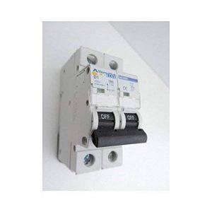 Disjoncteur 1A 2P courbe D 6kA bornes vis norme CE ALTERNATIVE ELEC AE14501 de la marque Alternative Elec image 0 produit