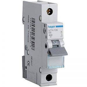 Hager Mtn106miniature Circuit Breaker, 1Tube, 1module, Type B, 6KA Breaking Capacité, 6A courant de la marque Hager image 0 produit
