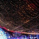 Happyit 4 M 40 LED Waterproof String Lights Xmas Holiday light Lampes décorées à l'extérieur pour fête Mariage Jardin Fée de Noël (Multicolore) de la marque Happyit image 4 produit
