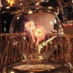 Injuicy Lighting G80 E27 Vintage Retro économie D'énergie Incandescent Ampoules Lampe Décorative Edison Ampoules de Noël Holiday Anniversaire Cadeau Décoration D'intérieur(Single Rose) de la marque Injuicy Lighting image 2 produit