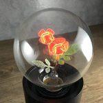 Injuicy Lighting G80 E27 Vintage Retro économie D'énergie Incandescent Ampoules Lampe Décorative Edison Ampoules de Noël Holiday Anniversaire Cadeau Décoration D'intérieur(Single Rose) de la marque Injuicy Lighting image 4 produit