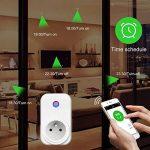 Intelligente Prise,Horsky Prise Connectée Intelligente WiFi Prise Compatible avec Android iOS Alexa Prises Télécommandées Prise Courant Intelligente Prise de Courant Mise en Veille Programmable Smart (WIFI Commande Prise lot de 2) de la marque Horsky image 2 produit