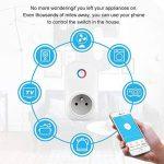 Intelligente Prise,Horsky Prise Connectée Intelligente WiFi Prise Compatible avec Android iOS Supporte Prises Télécommandées Prise Courant Intelligente Prise de Courant Mise en Veille Programmable 2.4G-Intelligente Socket Compatible avec Amazon Alexa-Pas image 1 produit