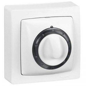 interrupteur temporisé à voyant saillie complet blanc de la marque Legrand image 0 produit