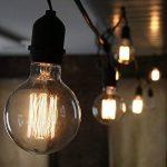 LBBDB Vintage Lampe Edison G125 E27 40W globe géant filament droites de Cage d'Écureuil de la marque LightBulbs image 1 produit