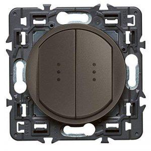 Legrand 099524 Céliane Interrupteur double lumineux, 250 V, Graphite de la marque Legrand image 0 produit