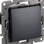 Legrand 397553mural, interrupteur pour encastrer Valena couleur Noir, 230V, graphite de la marque Legrand image 1 produit