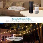 Outdoor Smart Prise, smiler + Outdoor Prise Wi-Fi avec 2prises, compatible avec Alexa et Google Home, sans fil avec télécommande/Timer de smartphone, étanche pour intérieur et extérieur de la marque Smiler+ image 2 produit
