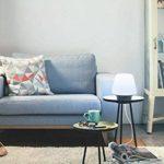 Philips Hue WellnessLampe de Table Noire White Ambiance E27 9,5W [Interrupteur avec Variateur Inclus], Lampe Connectée - Lumière Led Blanche Naturelle - Compatible avec Apple Homekit, Alexa de la marque Philips Lighting image 4 produit