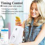 Prise Intelligente Connectée WiFi Compatible avec Android iOS Amazon Alexa Google assistant,Aucun Hub Requis Prise Télécommandée Prise de Courant Mise en Veille Programmable (Lot de 2) de la marque ANOOPSYCHE image 3 produit