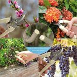 Sécateur professionnel à batterie électrique sans fil avec lames massives pour arbres, jardin, vigne et fruits (1Blade, 1 ciseaux de taille manuelle en cadeau) de la marque HYDLJN image 3 produit