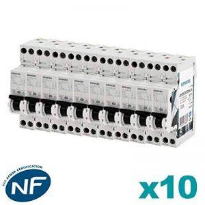 Siemens - Lot de 10 Disjoncteurs électriques phase + neutre 10A de la marque Siemens image 0 produit