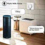Smart UE Plug - 2.4G WiFi Télécommande Timer Socket Soutien Alexa Echo et Google Home Contrôle vocal Smart Home de la marque wlansmart image 3 produit