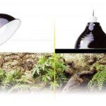 support ampoule TOP 0 image 1 produit