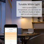 TP-Link Ampoule LED connectée WiFi, culot E27, lumière blanche d'ambiance, 10W, fonctionne avec Amazon Alexa (Echo et Echo Dot), Google Assistant et IFTTT pour la commande vocale, toutes les teintes de blanc, pas besoin de hub [Classe énergétique A+] - L image 3 produit