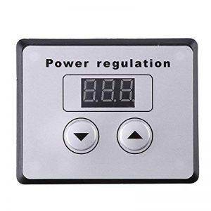Variateur de tension numérique 10000 W SCR Variateur de vitesse AC 220 V 80 A de la marque Hilitand image 0 produit