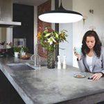 variateur luminaire TOP 8 image 4 produit