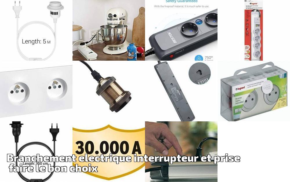 Branchement Electrique Interrupteur